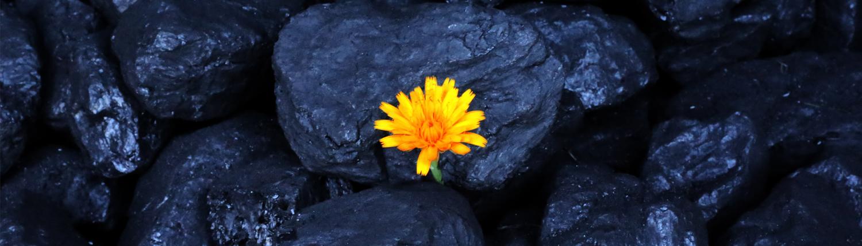 زغال سنگ حرارتی